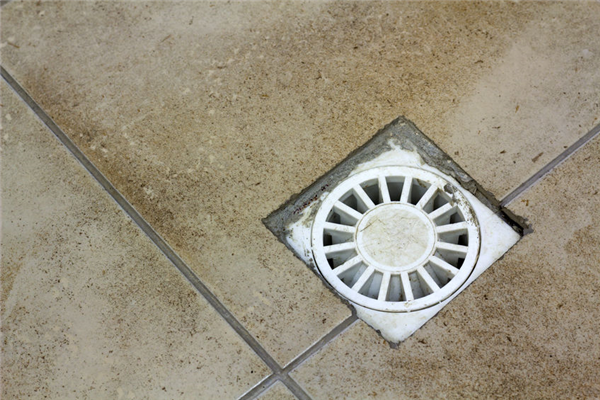 Floor Drains: Quick Tips for Maintenance and Service in Your