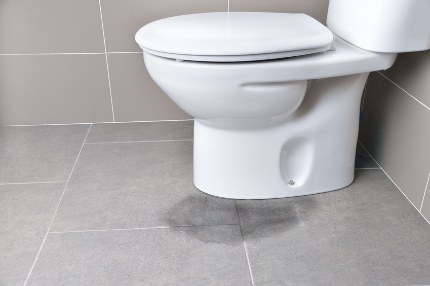 How to Diagnose a Clogged Toilet